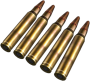 5.56mm Rounds.png