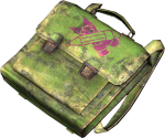 Green Child Briefcase.png