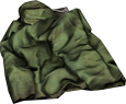 Green Raincoat.png