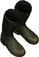 Wellies Green.png